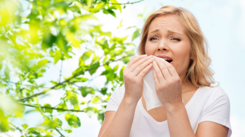 Allergic Rhinitis (Nasal Allergies)